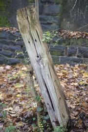 Watching pole