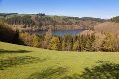 Landscape in Hellenthal