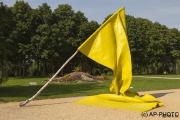 Coolen, Caroline; Flag, 2010