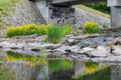 Bridge on Wupper dam
