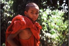 Novice, Myanmar