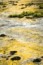 Wasserlauf_4746_rag_web