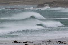 791volunteer beach_2187_web