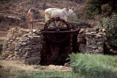Daspan, Wasserrad